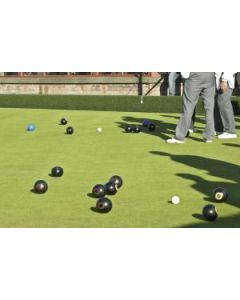 Top Quality, Bowling Green Lawn Seed