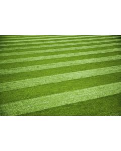 Amenity Lawn Mixture Sports Pitches